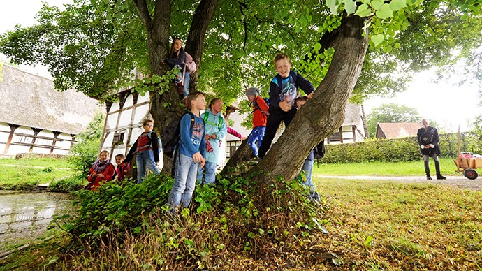 A group of pupils climbing on a tree.